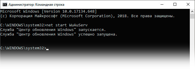 Команда net start WuAuServ